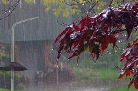 Cod galben de ploi şi furtuni în jumătate de ţară.