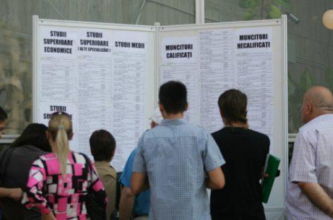 Piaţa muncii. Peste 20.000 de locuri de muncă vacante la nivel naţional