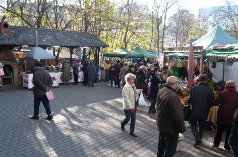 Miroase a toamnă şi a must în parcul Herăstrău