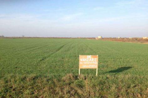 Reguli pentru vânzările de terenuri agricole extravilane