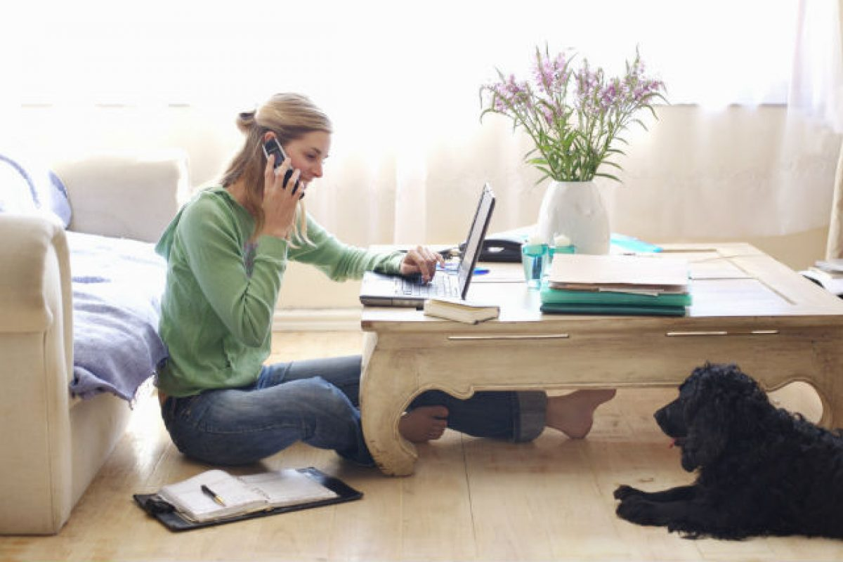 Ministerul Muncii vrea să introducă şi la noi conceptul de teleworking